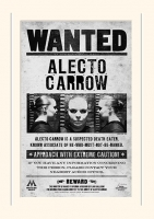 Harry Potter - Gadget - Passepartout Alecto Carrow - Ufficiale
