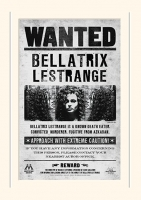 Harry Potter - Gadget - Passepartout Bellatrix Lestrange - Ufficiale