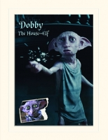Harry Potter - Gadget - Passepartout Dobby - Ufficiale