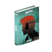 Harry Potter - Diario Scolastico Harry - Prodotto ufficiale © Warner Bros. Entertainment Inc.