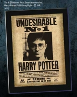 Harry Potter - Quadro Indesiderabile N°1