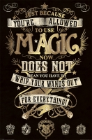 Storia e Magia - Harry Potter - Poster Magic - Ufficiale