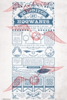 Harry Potter - Poster Quidditch at Hogwarts - Prodotto ufficiale Warner Bros.