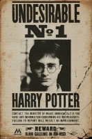 Poster - Harry Potter Undesirable N°1
