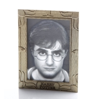 Harry Potter - Quadro 3D Harry - USB - Prodotto Ufficiale Warner Bros.