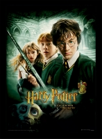 Harry Potter - Quadro Camera dei Segreti - Prodotto Ufficiale Warner Bros.