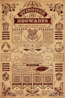 Harry Potter - Poster Quidditch Hogwarts - Ufficiale